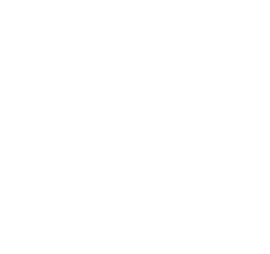 Instituto de Biomecánica de Valencia